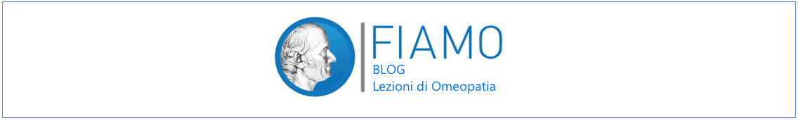 grafica-blog2