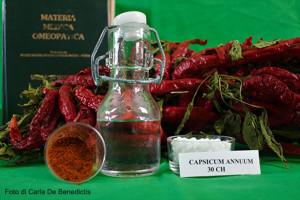 capsicum-bassa-1