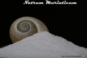 natrum-mur-bassa